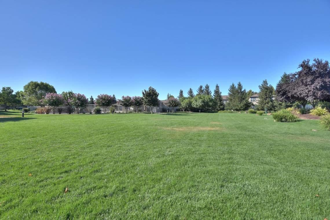 1121-Donahue-Dr-Pleasanton-CA-large-023-023-Community-Park-1499x1000-72dpi